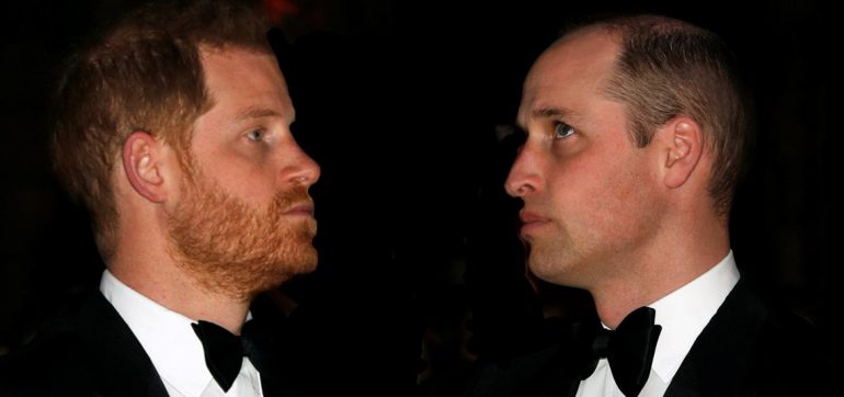 principe Harry y William