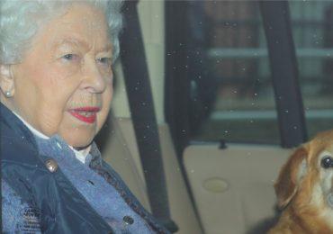 Que comen perros reina Isabell II