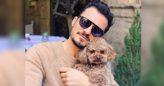 Orlando Bloom está destrozado por la perdida de su perrito