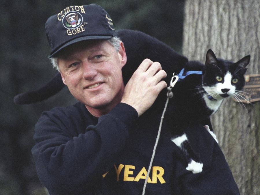 socks fue el gato que bill clinton llevó a la casa blanca