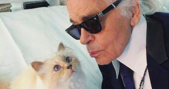 karl lagerfeld con su gato choupette