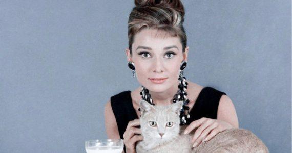 Audrey Hepburn: Biografía, películas y muerte