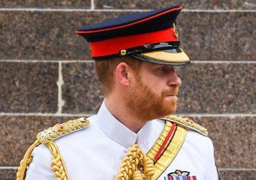 Parecido entre el príncipe Harry y el príncipe Felipe blanco